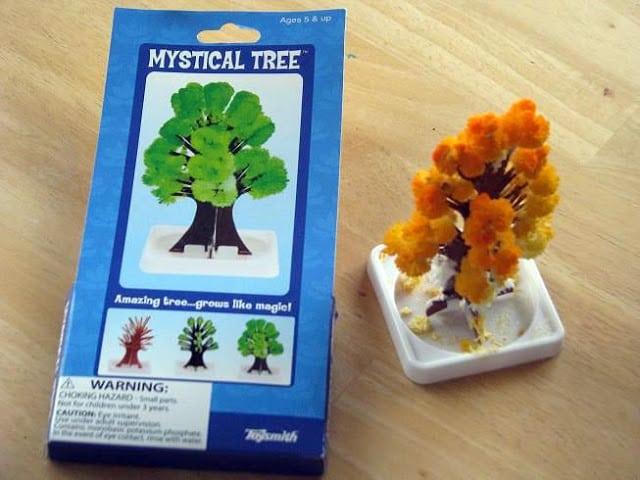 color tree science kit in box
