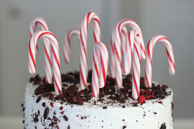 "A peppermint ice cream cake is just right for a winter birthday! Inspired by the movie, ""Elf"" this candy cane forest cake is delicious and oh so festive!"