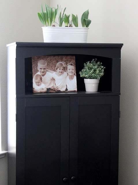 bulbs in pot on cabinet