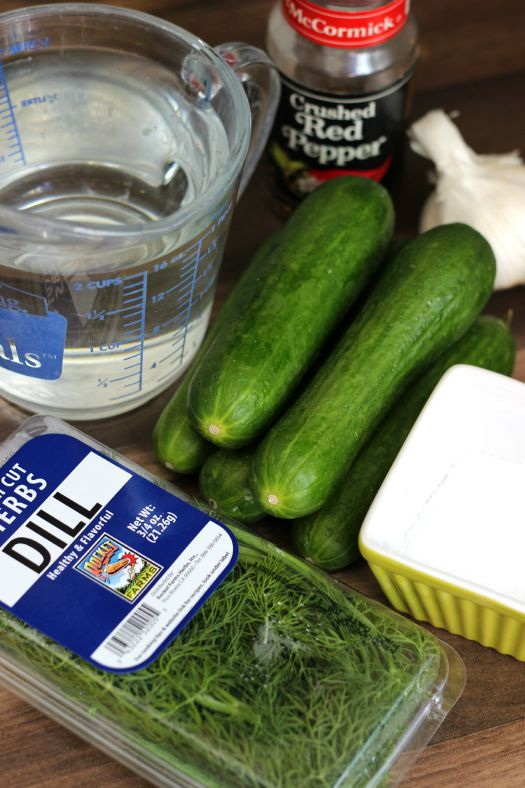 cucumbers, salt, vinegar, pepper flakes, garlic and dill on counter