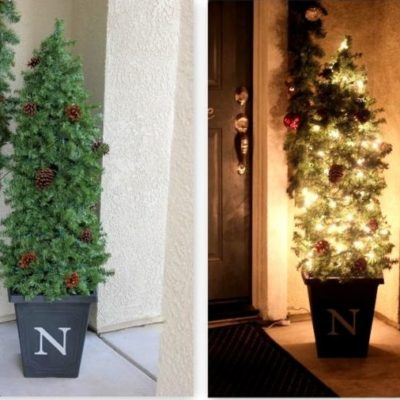 side by side of topiary with lights and without lights