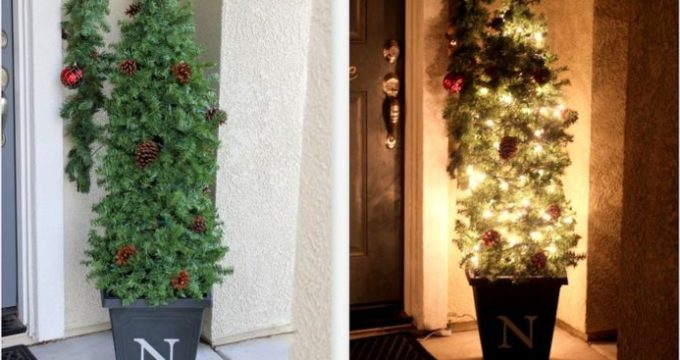 Easy Evergreen Tree Topiary Using a Tomato Cage