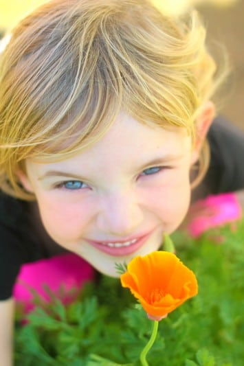 little girl with orange poppy