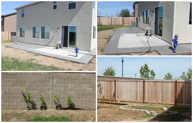 backyard projects concrete and garden
