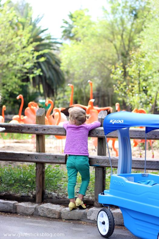 A Day at the Zoo: crafts and activities