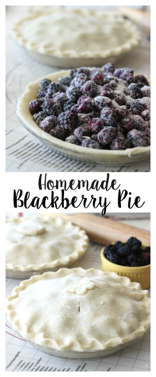 You can substitute any berry in this blackberry pie recipe and adjust the sugar accordingly. This is a delicious and flaky summer pie made with sun ripened blackberries. What berry would you use?