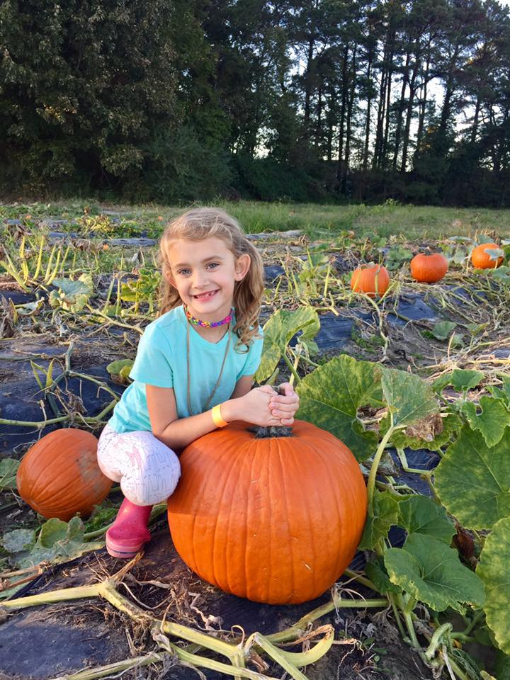 hickory ridge pumpkin patch chesapeake va