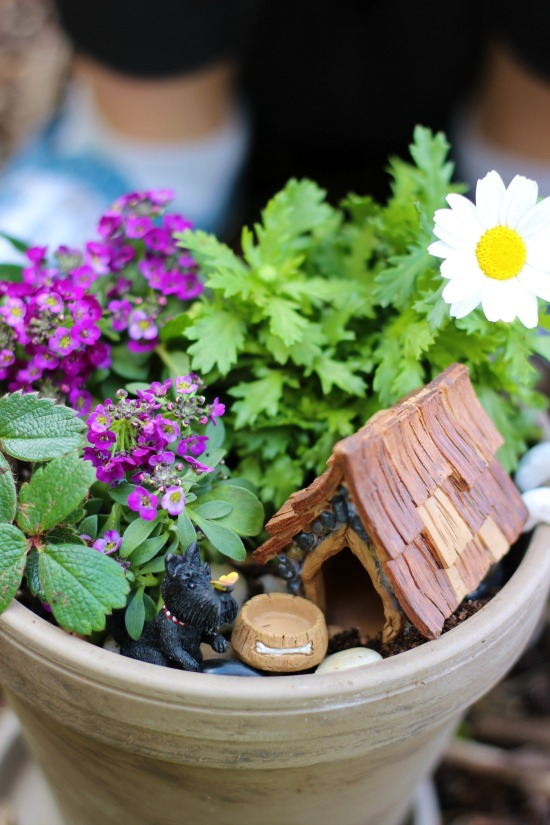 Mini flower gardens are a great spring planting project for kids! Customize them to represent their favorite animals or hobbies with these darling fairy garden accessories!