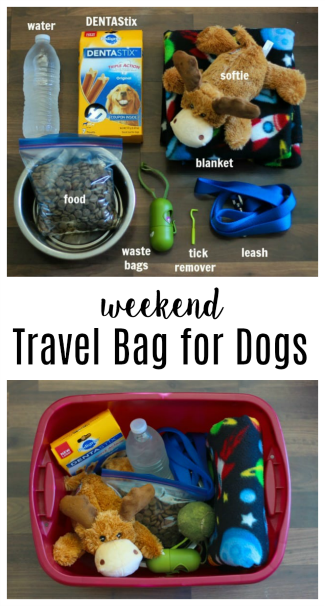 travel bag for dogs items