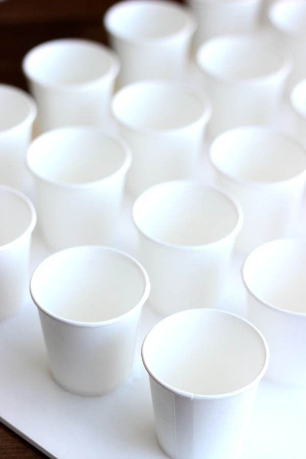 cups for advent calendar lined up on foam board