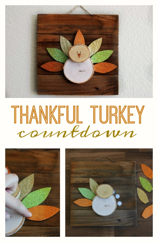 Add a feather to turkey every day the week before Thanksgiving after you name one thing you are thankful for. A fun Thanksgiving craft and activity!