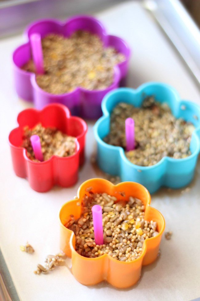 Birdseed feeders are easy for kids to make and require only a few ingredients! Hang them in a tree and take notes on the types of birds who come along to snack on them!