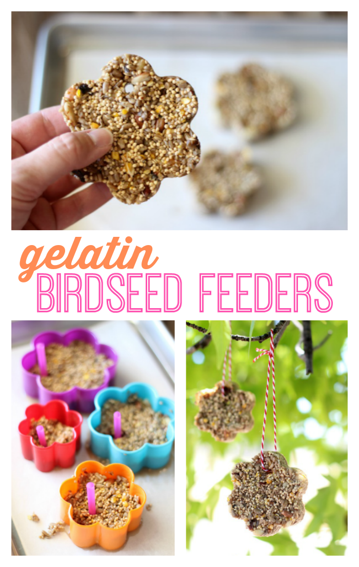 homemade gelatin birdseed feeders in tree