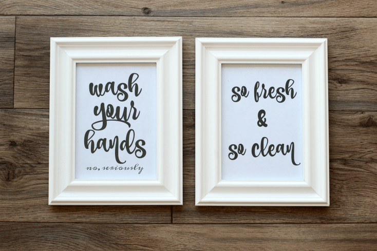 Free printables for the bathroom. Several sets to choose from and ready to download and frame, to add a bit of character to any bathroom!