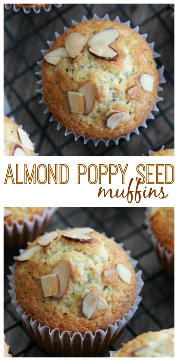 This almond poppy seed muffin recipe will leave you feeling like you just enjoyed dessert for breakfast. Full of delicious vanilla and almond flavor and a crunch from the toasted almonds. A versatile muffin batter recipe is essential for any baker and this one is just that! Customize it to create pretty much any muffin you'd like.