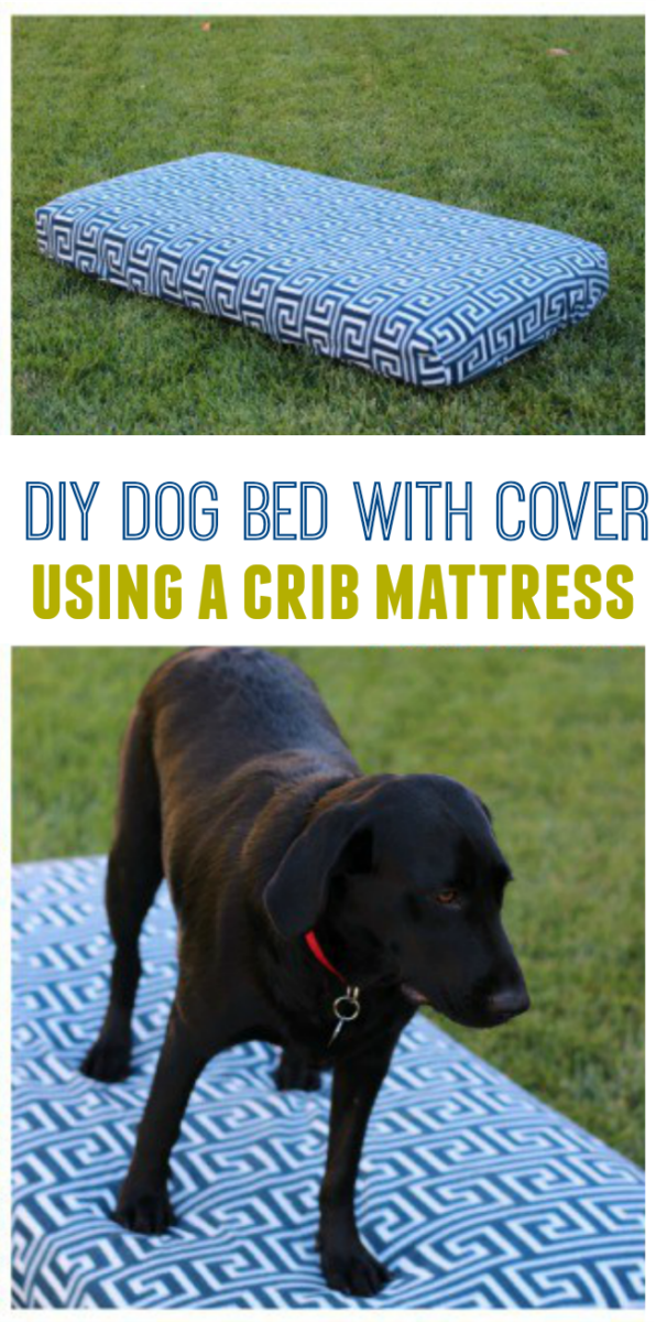 A crib mattress dog bed works perfectly indoors or outdoors! It provides support to sleep on, it's waterproof, it's nice and sturdy plus it isn't plush or easy to rip or chew.