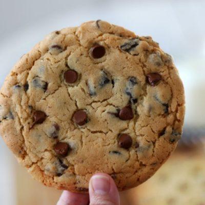 hand holding baked jumbo chocolate chip cookie
