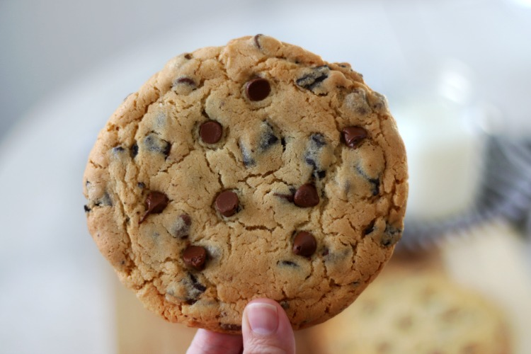 hand holding baked jumbo chocolate chip cookie
