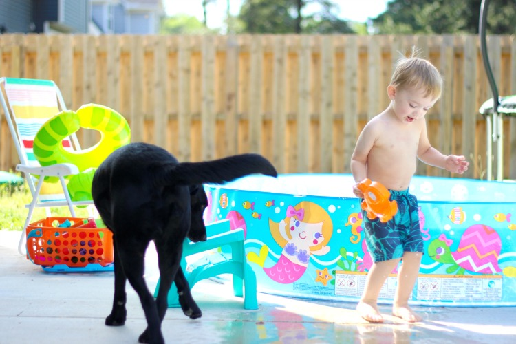 toddler and dog playing in the backyard