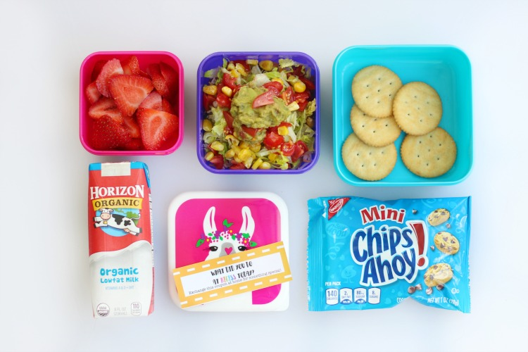 sandwich free lunch ideas for kids: Mexican layered dip finished and styled
