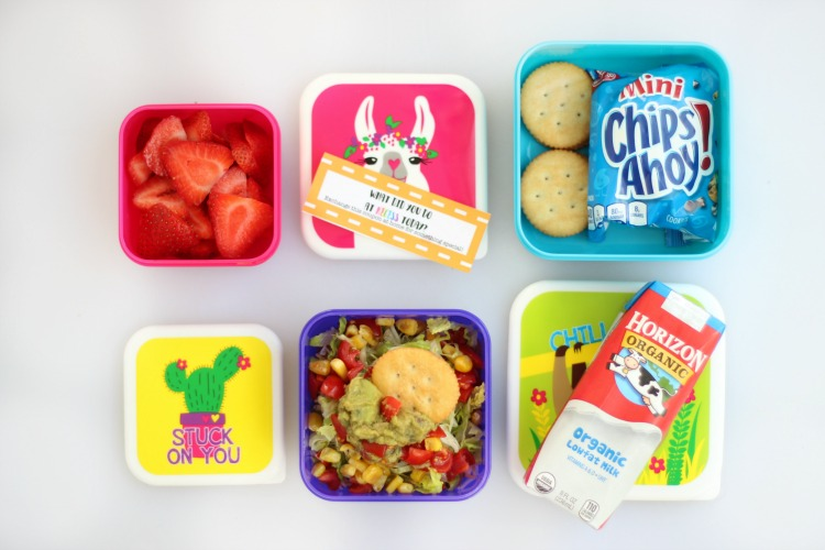 open lunch containers with crackers, strawberries, milk and Mexican layered dip