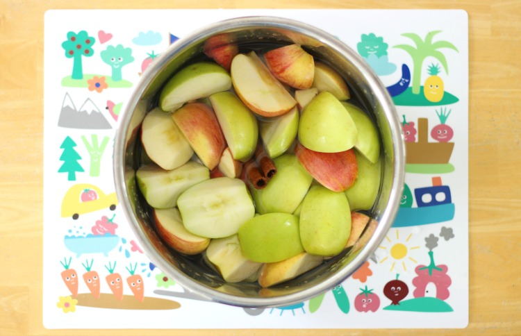 sliced apples, water and cinnamon in instant pot