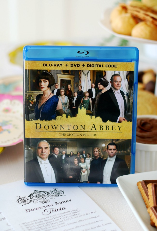 copy of downton abbey dvd for movie night