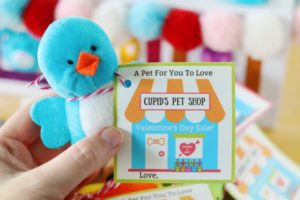 hand holding pet shop valentine and blue stuffed bird toy