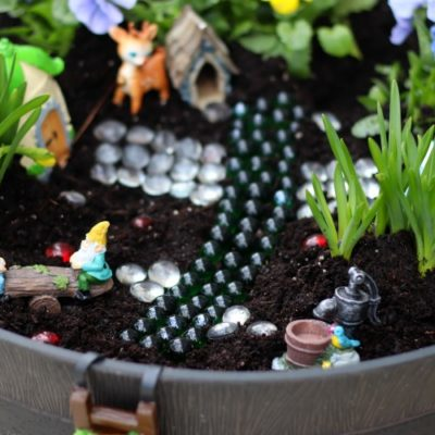 finished fairy garden
