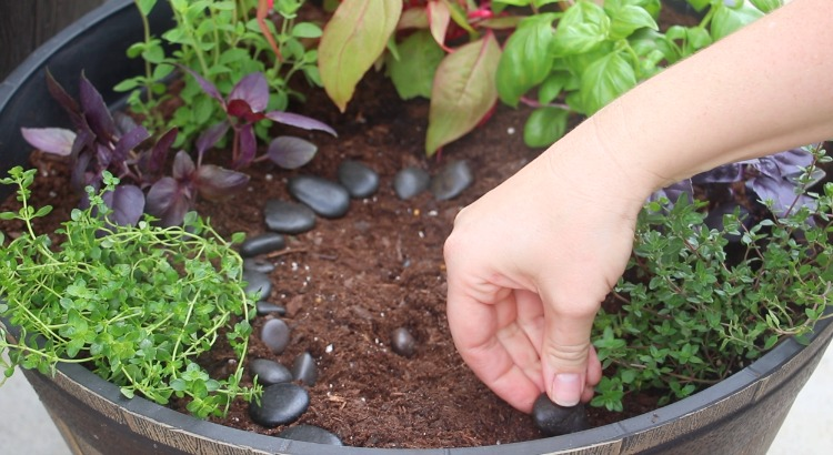 adding stones to garden