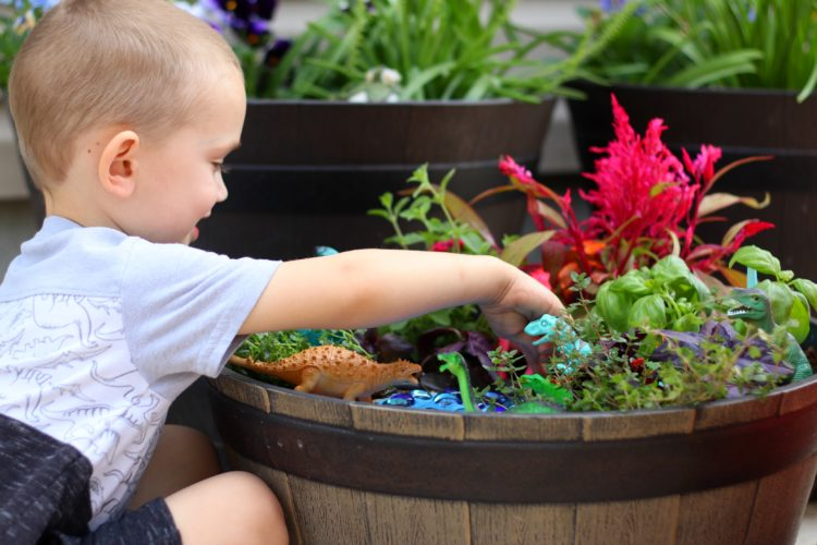 toddler playing with dinosaur garden