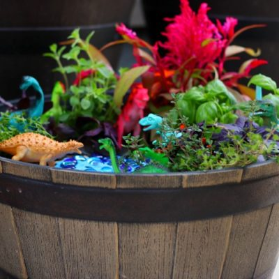 barrel with finished dinosaur garden