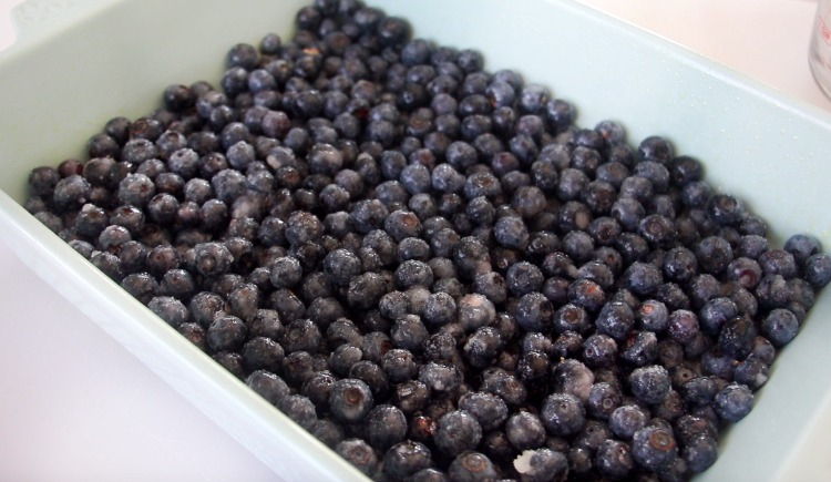 blueberries with sugar in baking dish