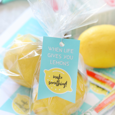 two lemons in plastic bag with tag attached