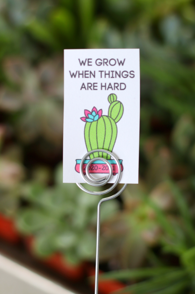 wire pick with tag for succulent gift
