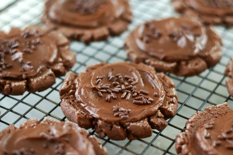 chocolate sugar cookies with chocolate frosting and sprinkles