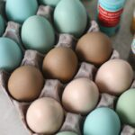egg carton filled with painted wooden eggs