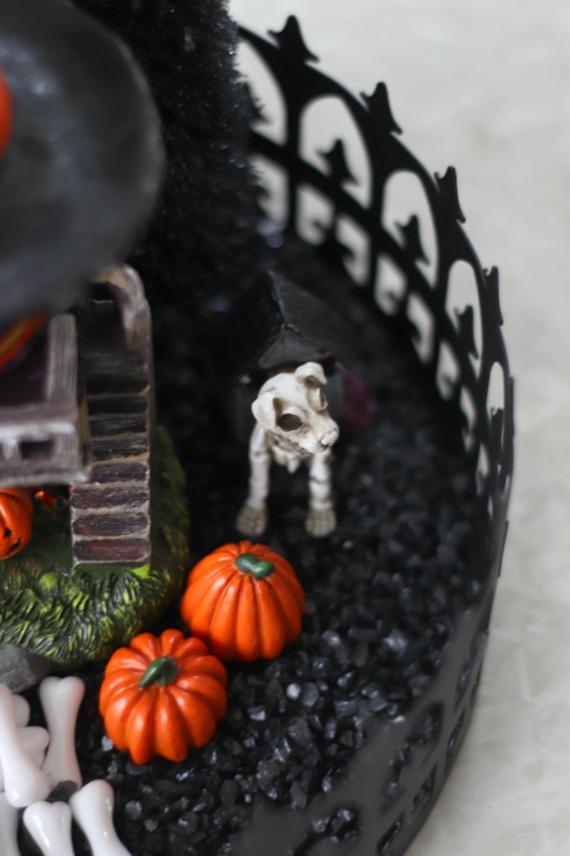 skeleton dog on black gravel