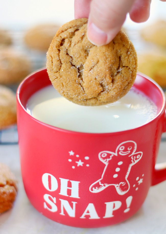hand dipping ginger cookie in milk