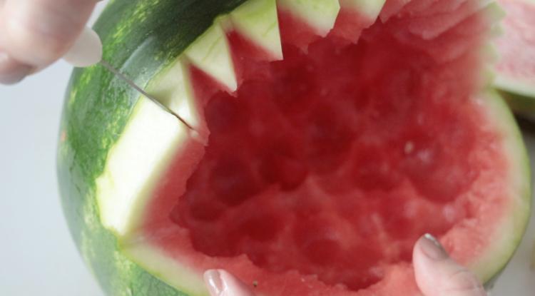 knife cutting shark teeth from watermelon