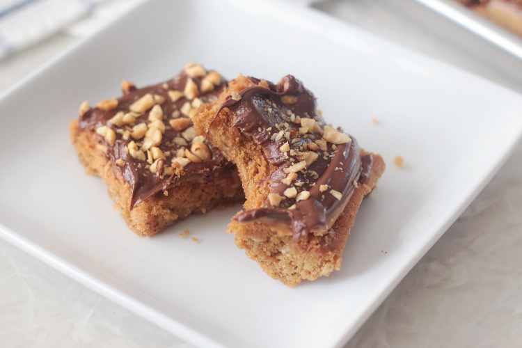 two chocolate peanut butter cookie bars on a plate